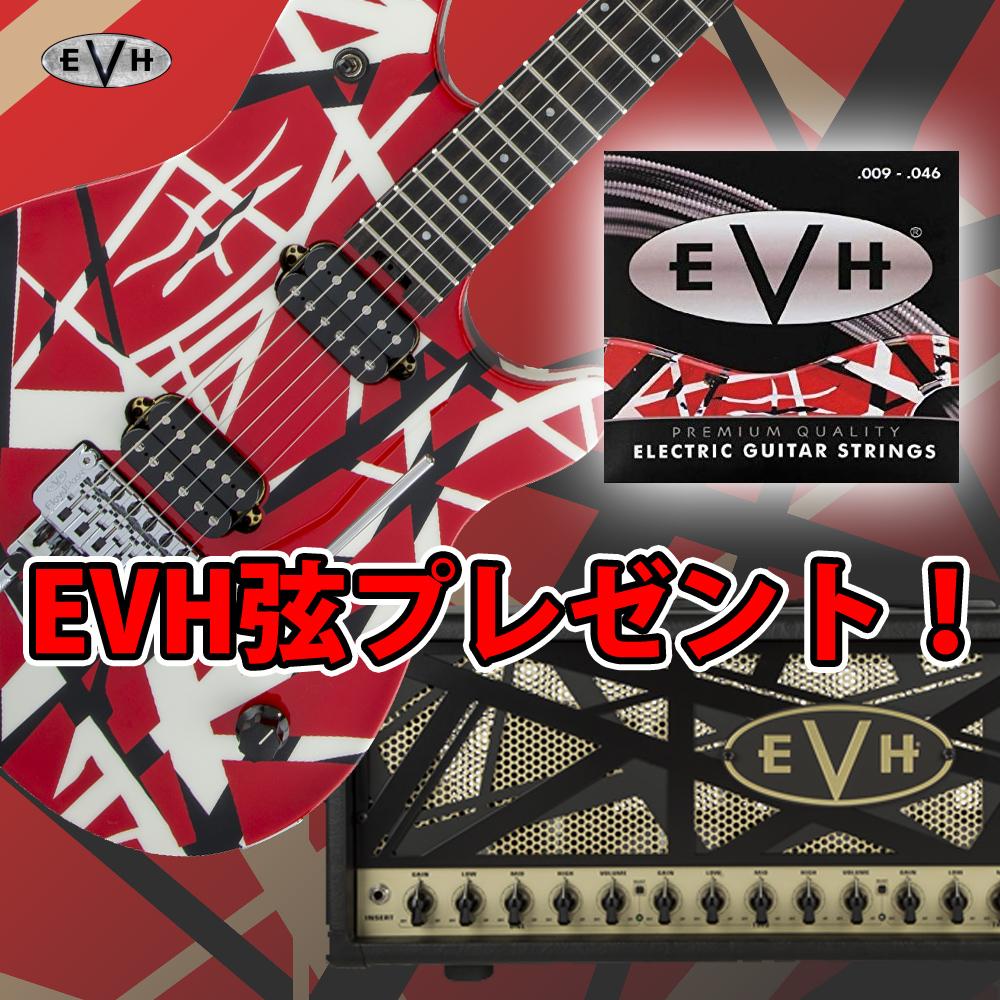 『EVHギターにエレキ弦プレゼント!』