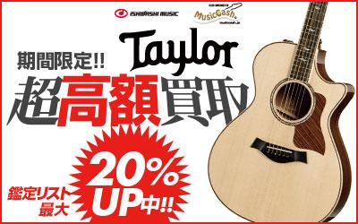 Taylor超高額買取
