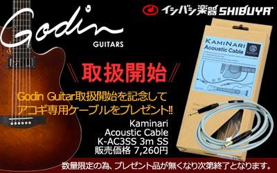 Godin Guitar 取扱開始!! イシバシ楽器渋谷店!