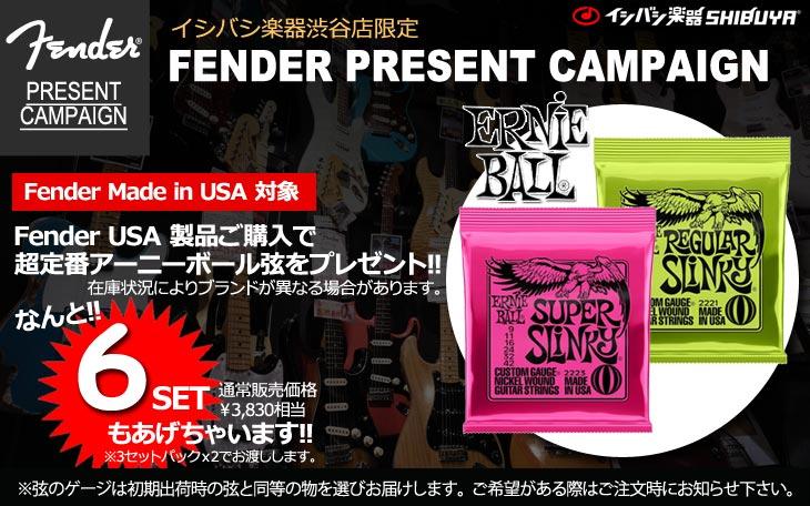 Fender USA製品限定特典