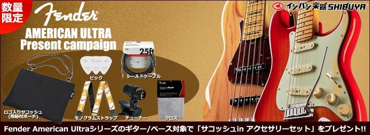 Fenderアクセパックプレゼント