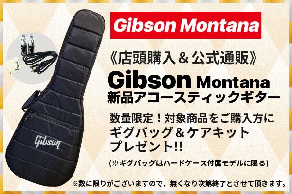 御茶ノ水本店|Gibson Montana