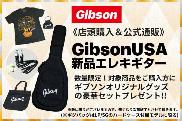 御茶ノ水本店|Gibson USA