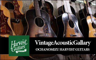 Harvest Guitars|Vintage Acoustic Gallery