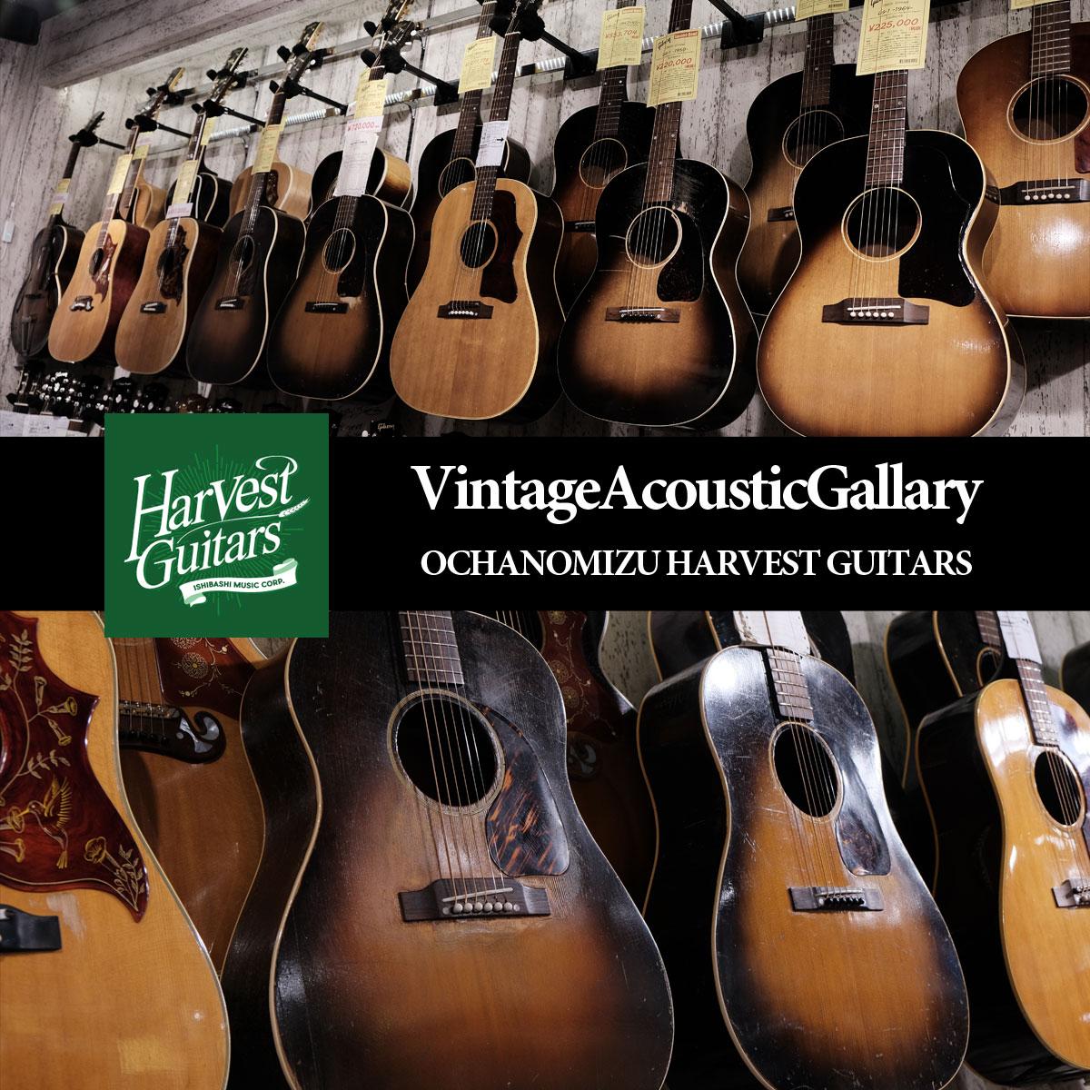 御茶ノ水本店 HARVEST GUITARS Vintage Acoustic Gallery ヴィンテージアコースティックギター