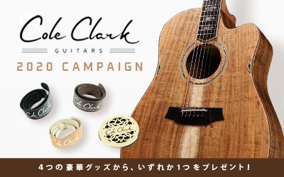 Cole Clark | 2020 CAMPAIGN