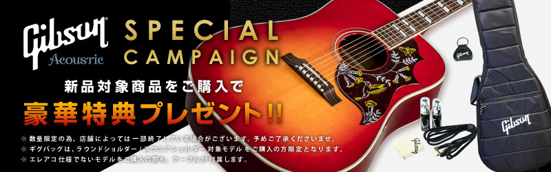 Gibson Acoustic Special Campaign