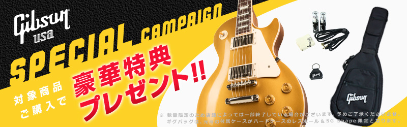 Gibson USA Special Campaign