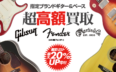 GibsonFenderMartin���20%UP�����ڡ���