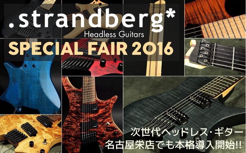 Strandberg Guitar SPECIAL FAIR