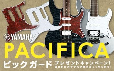 YAMAHA / PACIFICA&BB ピックガードプレゼントキャンペーン!