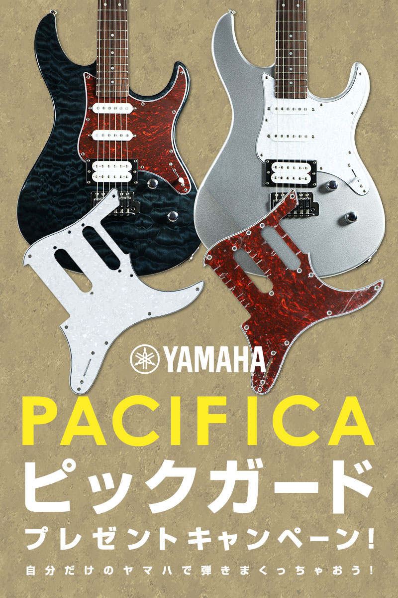 YAMAHA / PACIFICA ピックガード プレゼントキャンペーン!