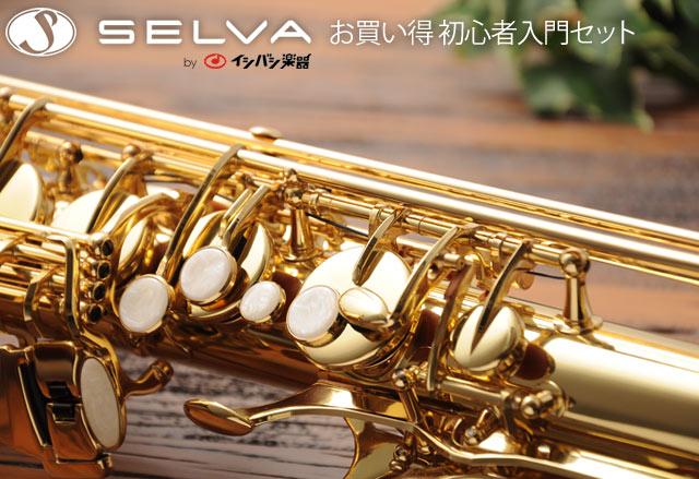 SELVA 管楽器 お買い得 初心者セット