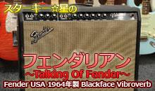 Fender USA 1964年製 Blackface Vibroverb